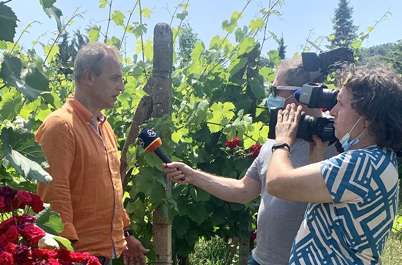 Do osvety sa zapojili aj vinohradníci a vinári